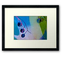 Bird Cherry Berries Framed Print