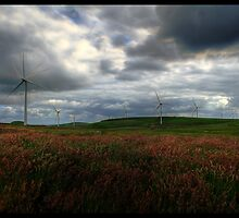 Wind Turbine (HDR) by Robert Paterson