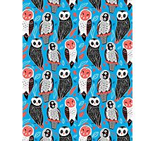 pattern of owls Photographic Print