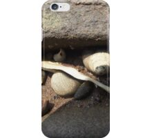 Snails, Sand and Rock iPhone Case/Skin