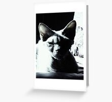 Toffee in black & white Greeting Card