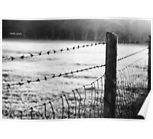 Barbwire Fence Poster