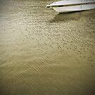Water World #6 by Juilee  Pryor