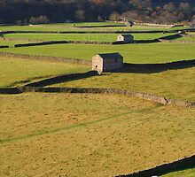 Barns and Drystone Walls by Paul Bettison