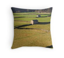 Barns and Drystone Walls Throw Pillow