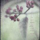 Purple Buds by JulieLegg