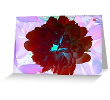Red and Pink Peony Greeting Card