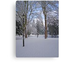 Tranquil snow scene Canvas Print