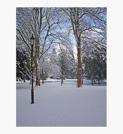 Tranquil snow scene Photographic Print