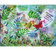 Fairy Fever Photographic Print