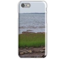Marshland at River John iPhone Case/Skin