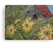 Sunflower Barn Canvas Print
