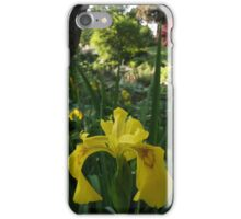 Yellow Iris iPhone Case/Skin