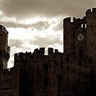 Castle by Vanwraithen