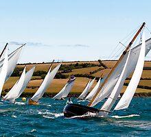 Stella Leads the Fleet by GBR309