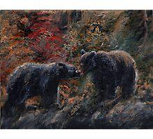 The Bear Kiss - Black Bears Photographic Print