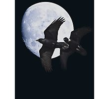 Night of the Ravens Photographic Print