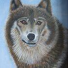 lone wolf by Dan Wagner