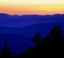 Clingmans Dome Smoky Mountains by Tony Ramos