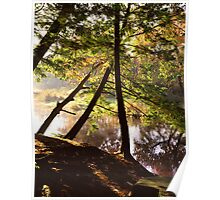 River Bank Autumn Poster
