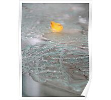 Autum Leaf On Glass Table After the Rain Poster