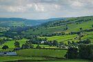 Nidderdale by WatscapePhoto