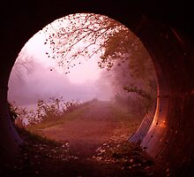 Through the Tunnel - A Hobbits View by Bob Boehm