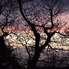 Different Coloured Sky by Becccaa