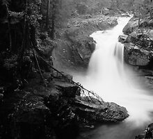 Silver Falls by Josh Elchin