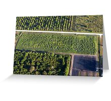 Countryside Citrus Corn Maze Greeting Card