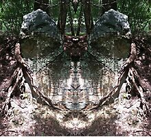 The faces in the stone Photographic Print