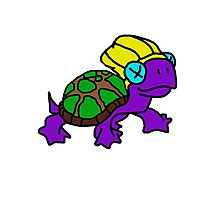 Purple turtle Photographic Print