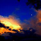 The Most Beautiful Floridian Storm  by CarolinehbFL