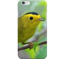 Wilson's Warbler iPhone Case/Skin