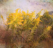 Love of Nature by Susan Werby