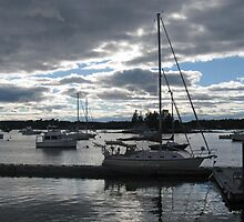 Boothbay Harbor at Night by Monnie Ryan