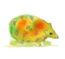 Hedgehog by LydiaEloff