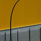Curve by TalBright