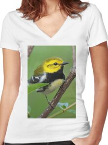 Black-throated Green Warbler Women's Fitted V-Neck T-Shirt