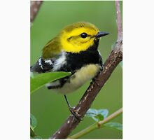 Black-throated Green Warbler Unisex T-Shirt