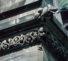 Frog Gargoyle on roof Nidaros Cathedral Trondheim Norway 198406220030 by Fred Mitchell