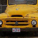 International Harvestor in Yellow by TxGimGim