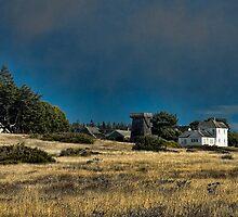 Mendocino Headlands by Karen Peron