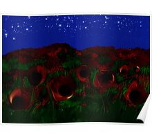Nignt Field of Poppies Poster