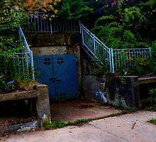 Bunker at Fort Foster by Carrie Blackwood