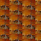 Orange Range by TalBright