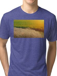 Sunflowers and feather grass Tri-blend T-Shirt