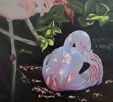 Dappled and Drowsy by Karen Ilari