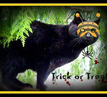 Trick Or Treat Cat by AngieBanta
