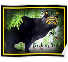 Trick Or Treat Cat Poster
